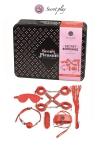 Kit BDSM 8 pièces - rouge